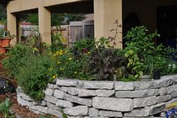 Edible Landscapes Tampa Bay