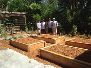 Urban Tropical Meditation Garden + Food Forest, Tampa, FL