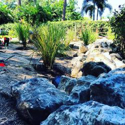 Natural Sea Walls Tampa Bay