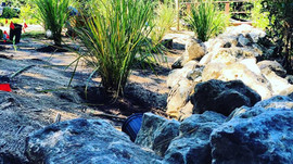Ecological Oasis in Crystal Beach, FL