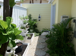 Small Space Gardening Tampa Bay