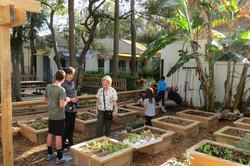 School Gardens Tampa Bay