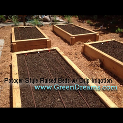 Raised Beds Tampa Bay