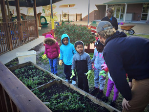 Giving Back: A Deserving Garden Project