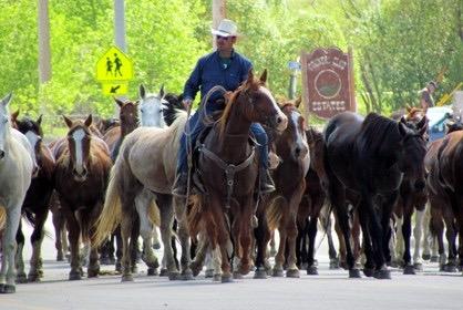 Eaton Ranch Horse Drive