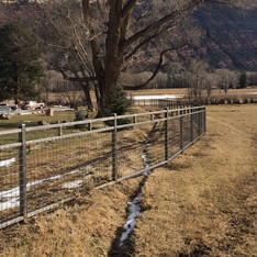Custom 3-Rail Fence with 4x4 Mesh