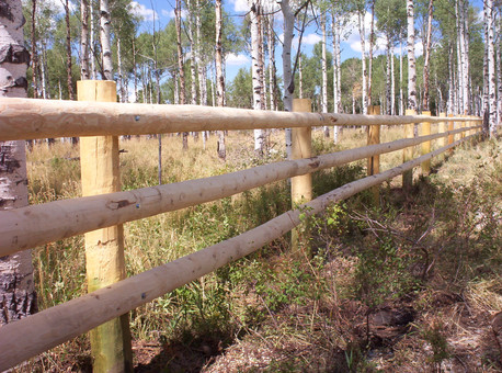 3-Rail Lagged-On Dowelled Fence
