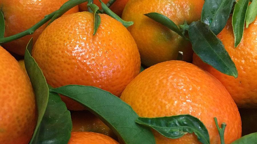 Clementine's Leafy 500g