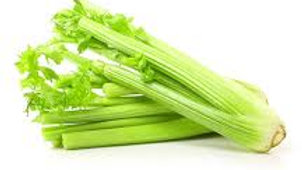 Celery Large Bunch