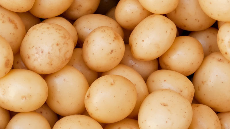Cornish New Potatoes 500g