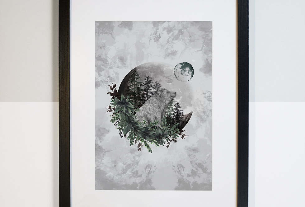 Luna Bear Illustrated Print | Mounted