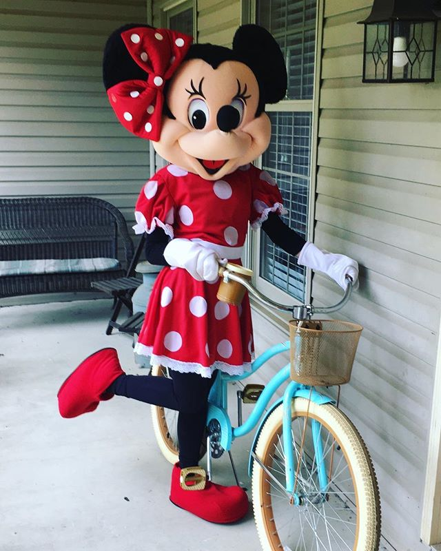 Minnie is here and available for booking