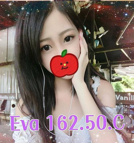 天津-早-EVA