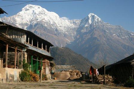 Himalayan Veiw