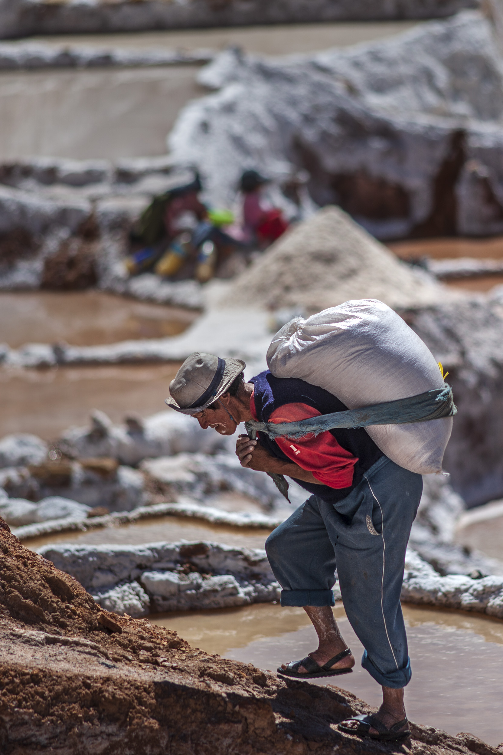La sal de los Incas 11