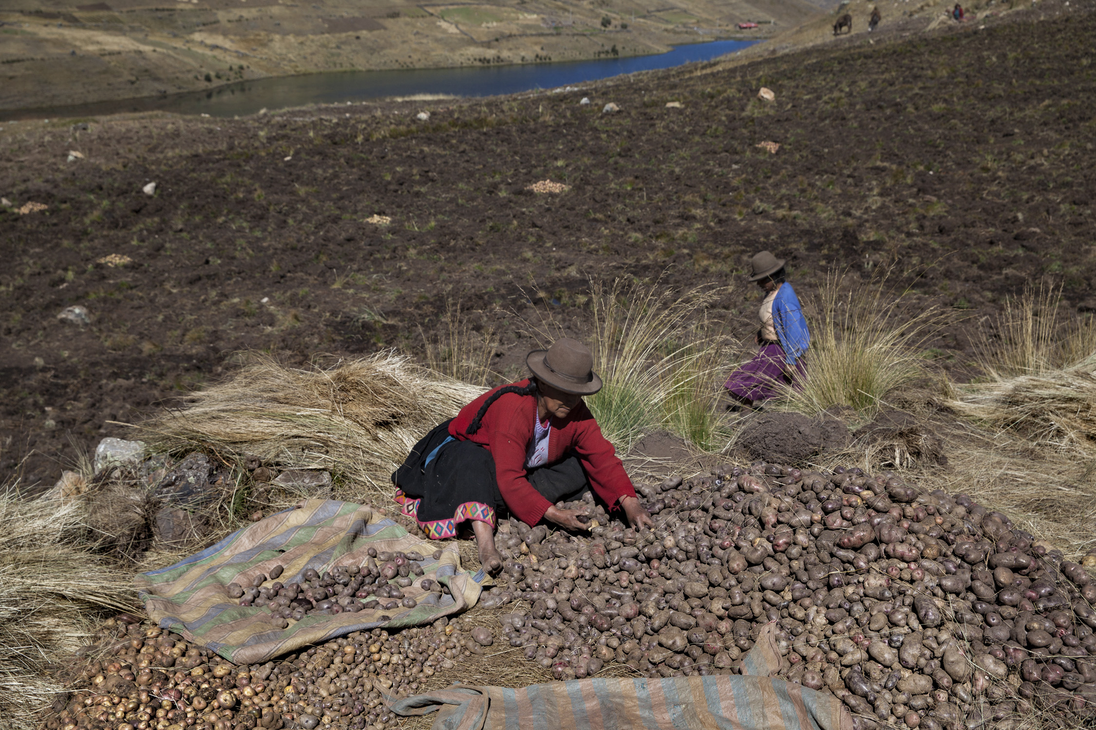 the treasure of the Andes 002