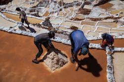 La sal de los Incas 4