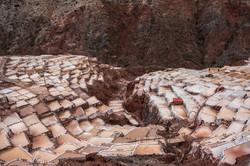 La sal de los Incas 16