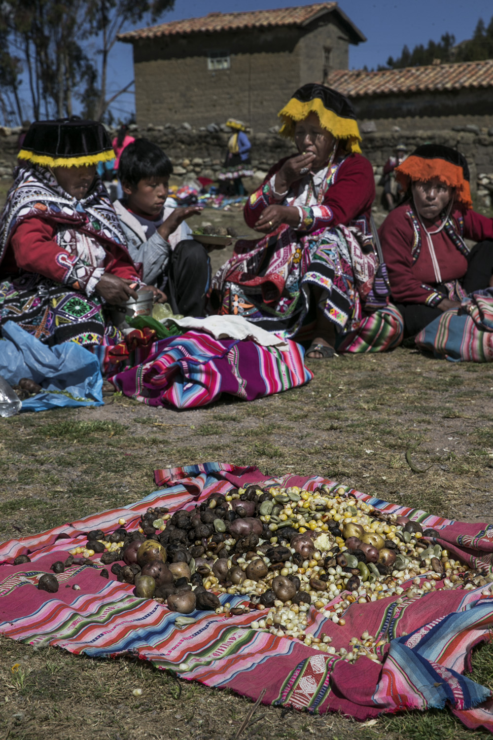 the treasure of the Andes 014