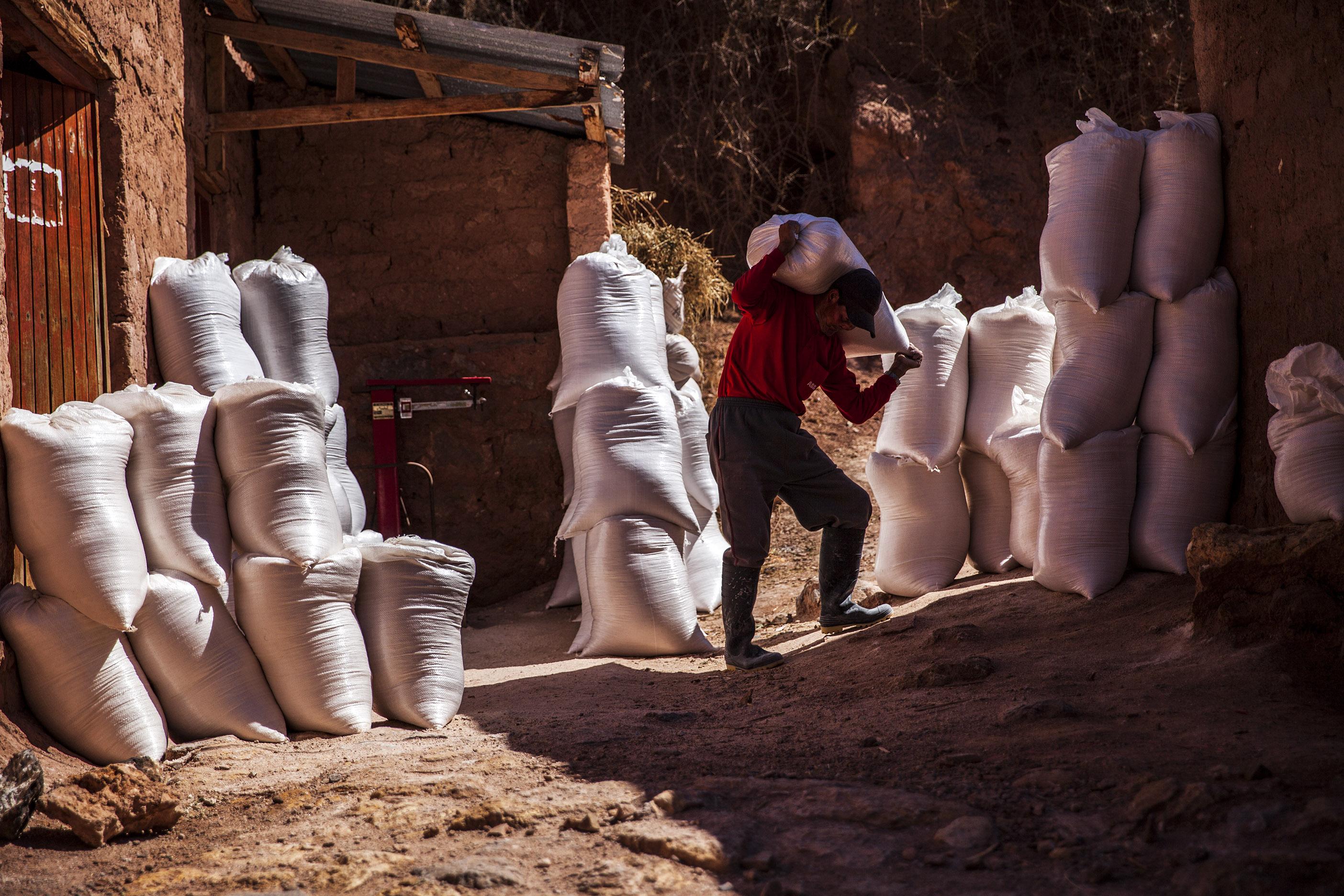 La sal de los Incas 12