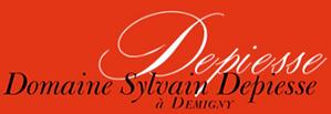 Sylvain Depiesse Logo