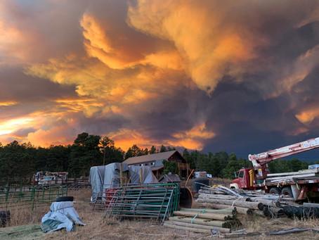 Ranch Fire Season 2020 Update