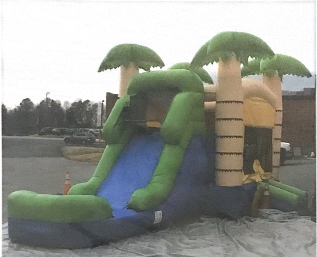 Tropical Bounce House Wet Dry
