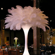 Feather Tower (Floor Standing)