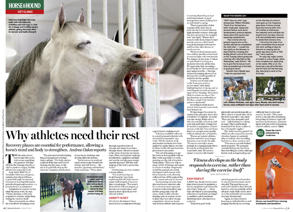 Writing: weekly vet pages, Horse & Hound