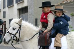 Golega Horse Fair © Andrea Oakes