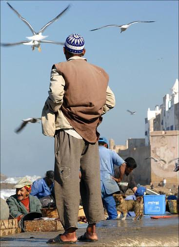 Photography: Morocco