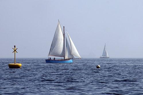 Sail Away - Helford River, Cornwall