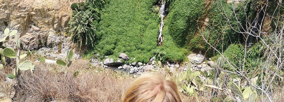 Vertige dans le canyon de Colca