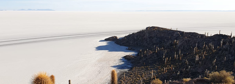 Île Incahuasi, Salar d'Uyuni