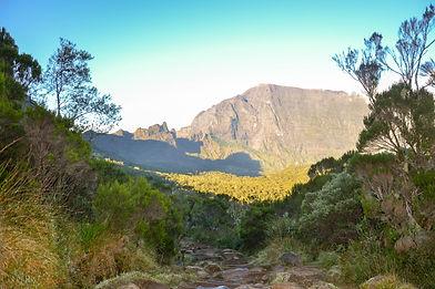 Col des Boeufs, La Réunion - Contrées Lointaines