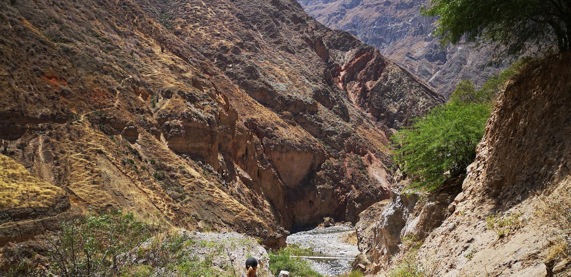 Dans le canyon de Colca