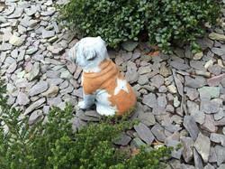 Bulldog Statue