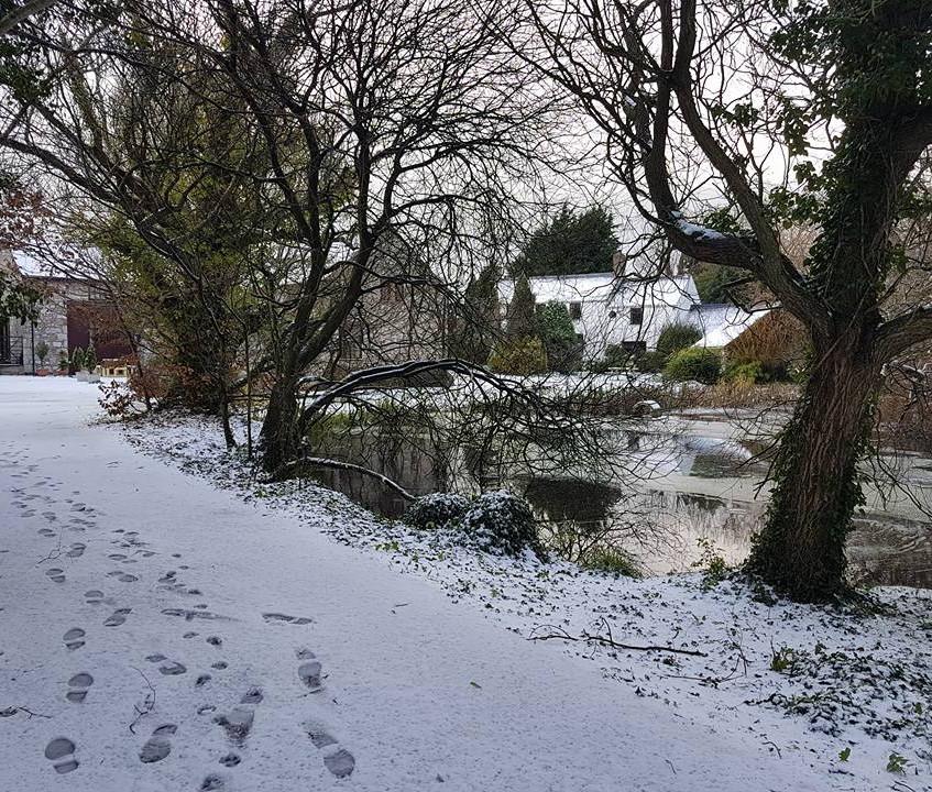 pond snow cottages