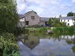 Primrose and farmhouse.jpg