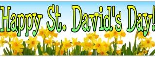 Celebrate St David's Day With Pen-y-Bryn Farm