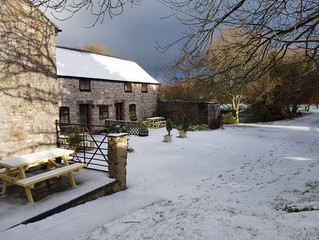 Enjoy Christmas With Pen-Y-Bryn Farm In North Wales