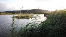Visit The Stunning RSPB Conwy This November