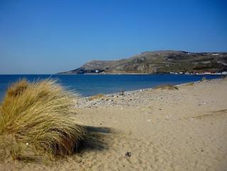 A Taste Of The Award Winning Beaches Surrounding Pen-y-Bryn Farm