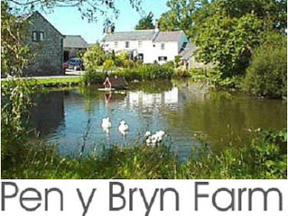 Enjoy A Fun Filled Day Out During Your Holiday At Pen-y-Bryn Farm