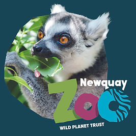 Newquay Zoo contents page.jpg
