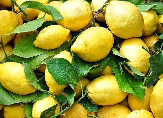 Limone (1 kg)