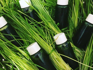 What's all the hype over wheatgrass?