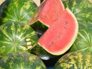 Watermelon: A Healthy Summer Treat