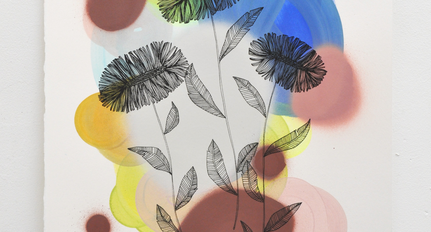 Daisies edition no. 7 of 30, silk screen print on hand painted background, 50 x 35cm
