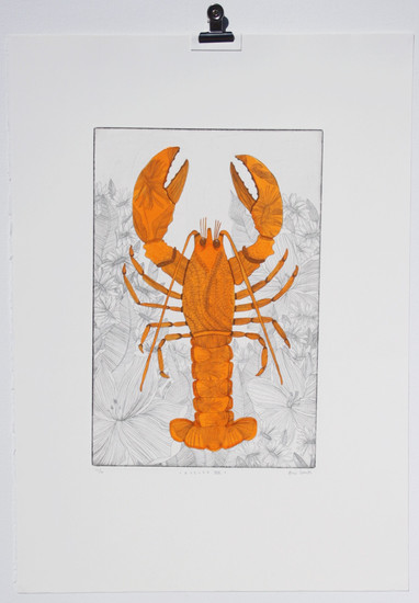 Boiled edition 13 of 40, lobster copper plate etching with watercolour made in London, 50 x 35cm